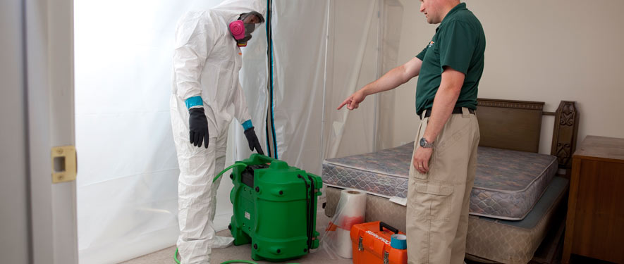 Cleburne, TX mold removal process